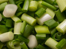 Chopped green onions Stock Images