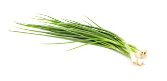 Chopped green onions on white background Royalty Free Stock Photography