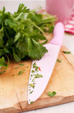 Chopped green parsley Royalty Free Stock Image