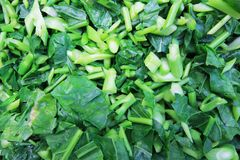 Chopped Green Vegetable Royalty Free Stock Photos