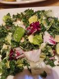 Chopped Kale Salad Stock Photography