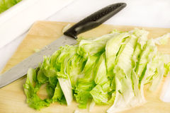 Chopped lettuce Royalty Free Stock Photography