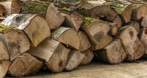 Chopped Logs Royalty Free Stock Image