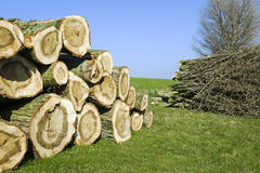 Chopped logs. And firewood stacked up on top of each other in a pile in a field royalty free stock photo