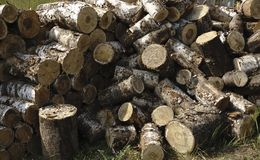 Chopped logs for winter fire.  Royalty Free Stock Photos