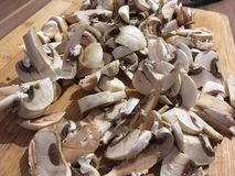 Chopped mushrooms royalty free stock photography