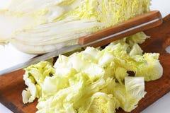 Chopped napa cabbage Stock Image