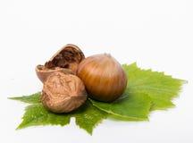 Chopped nuts. Fresh chopped nuts royalty free stock photo