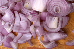Chopped onion Stock Image
