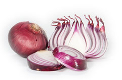Chopped onion. A chopped onion isolated on white background royalty free stock photos