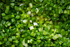 Chopped onion Stock Photography