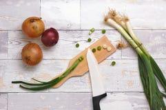 chopped onion Στοκ Εικόνα