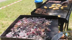 Chopped onion on hot plate and grill Stock Image
