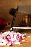 Chopped onions 1 stock photography