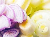 Chopped onions Royalty Free Stock Photos