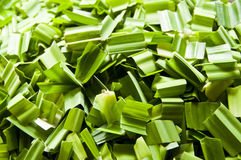 Chopped pandan leaf. Stock Images