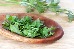 Chopped Parsley. Chopped fresh flat leaf parsley in wooden spoon stock photos