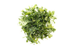 Chopped parsley leaves Stock Photos