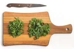 Chopped Parsley and Spring Onions. Fresh Herbs Royalty Free Stock Photos