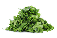 Chopped raw chard leaves Stock Photography