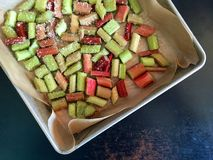 Chopped rhubarb tossed with sugar in parchment paper-lined aluminum pan Stock Images