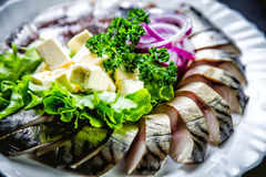 Chopped roasted and pickled herring with onions cheese and herbs Stock Image