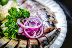 Chopped roasted and pickled herring with onions cheese and herbs Stock Images