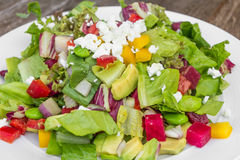 Chopped salad. With goat cheese Royalty Free Stock Image