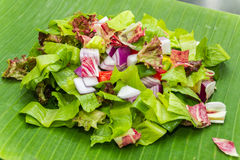 Chopped salad on banana leaf Royalty Free Stock Image