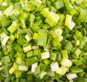 Chopped Scallions Close Up View X Stock Image