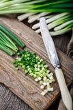 Chopped scallions Stock Image