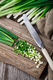Chopped scallions Stock Photography