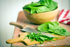 Chopped spinach leaves Stock Photo