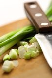 Chopped spring onions Royalty Free Stock Image