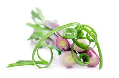 Chopped spring onions Royalty Free Stock Photos
