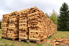 Chopped and Stacked Firewood on a Field Stock Photo