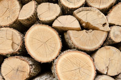 Chopped and stacked firewood for home fireplace Royalty Free Stock Photo