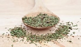 Chopped tarragon on wooden spoon Stock Image