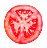 Chopped tomato royalty free stock photos