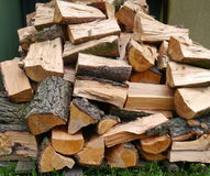 Chopped tree. A pile of fresh tree blocks Royalty Free Stock Photos
