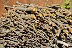 Chopped tree branches. Stacked firewood stock photos