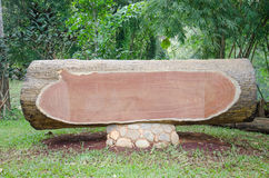 Chopped tree log lies on the ground Royalty Free Stock Photos