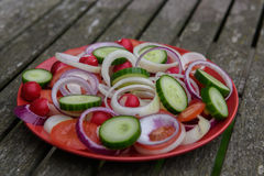 Chopped Vegetables Stock Image