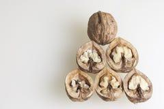 Chopped walnuts. Stock Photography