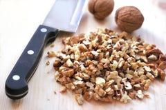 Chopped walnuts Stock Image