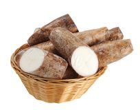 Chopped and whole cassava Stock Photo
