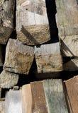 Chopped wood. Texture on sunny light Stock Image