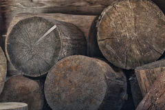 Chopped wood. Chopped brown tree stumps stacked on each other Royalty Free Stock Images