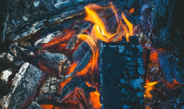 Chopped wood burns and smokes in the grill. Preparing for meat roasting on the fire. Barbecue in nature Stock Photography