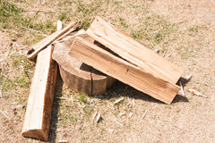Chopped wood lie Royalty Free Stock Images